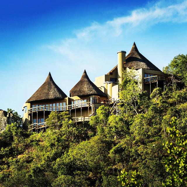 amazing safari destination wedding